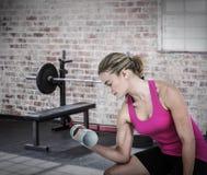 Złożony wizerunek ćwiczy z dumbbells mięśniowa kobieta Obraz Royalty Free