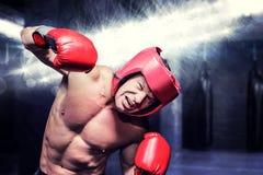 Złożony wizerunek agresywny bokser przeciw czarnemu tłu Fotografia Stock