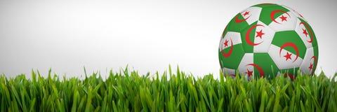 Złożony wizerunek futbol w Algeria colours ilustracja wektor