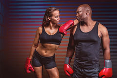 Złożony wizerunek męski i żeński bokser patrzeje each inny Obraz Stock