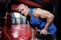 Złożony wizerunek portret ćwiczy z dumbbells dysponowany mężczyzna Zdjęcie Royalty Free