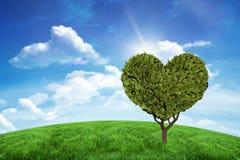 Złożony wizerunek serce kształtująca roślina Fotografia Stock