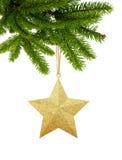 Złociści boże narodzenia grają główna rolę na nowego roku drzewa zieleni gałąź odizolowywającej na wh Obraz Royalty Free
