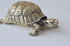 Złociści feng-shui żółwie zdjęcie royalty free