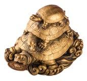 Złociści feng-shui żółwie zdjęcia stock