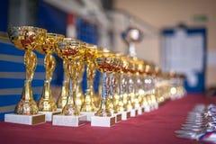 Złociści mistrzów trofea, medale i wykładali up w rzędach zdjęcie stock