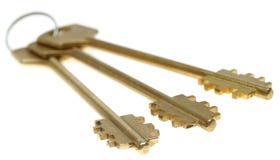 złociści ostrość klucze selekcyjni trzy Fotografia Stock
