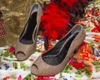 Złociści szpilki buty Fotografia Royalty Free