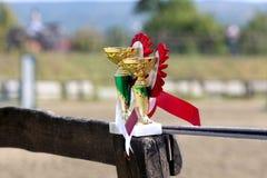 Złoci barwioni trofea czekać na zwycięzców przy equestrian wydarzenia latem zdjęcia stock