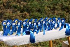 Złoci barwioni trofea czekać na zwycięzców przy equestrian wydarzenia latem obrazy stock