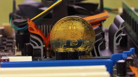 Złoci bitcoin stojaki na planie komputerowy narzędzia zbiory wideo