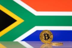 Złoci bitcoin stojaki na tle stan flaga Południowa Afryka Obrazy Royalty Free