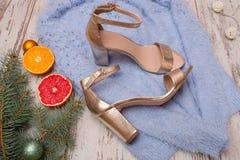 Złoci buty na błękitnej puloweru, grapefruitowej, pomarańczowej i świerczyny gałąź, piękna błękitny jaskrawy pojęcia twarzy mody  Zdjęcie Royalty Free