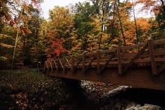 Złoci liście nad drewnianym mostem i zatoczką - ranek obrazy stock