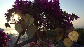 Złoci liście wiesza od drzew przeciw tłu purpurowi kwiaty i świt zbiory wideo