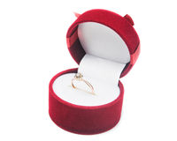 Złoci pierścionki z pudełkiem Fotografia Stock