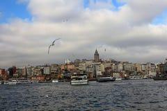 Złoci rogu Galata wierza Seagulls Eminonu Istanbuł obrazy stock