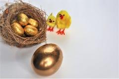 Złoci Wielkanocni jajka i kurczaki zdjęcia royalty free