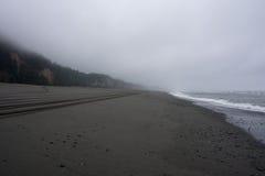 Złocista blef plaża na wybrzeże pacyfiku w Kalifornia Zdjęcia Stock