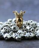 Złocista czaszka wśród zwyczajnych metal czaszek Obraz Royalty Free