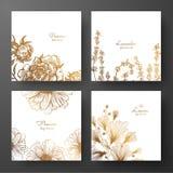 Złocista kolekcja karta projekt z peoniami, lawendą, chamomile i liśćmi ginkgo biloba, Szablon rama dla urodziny i gre royalty ilustracja
