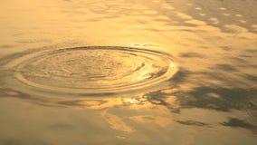 Złocista okrąg czochra od deszcz kropli na wody powierzchni w ranku dniu Ciepła pomarańcze wody powierzchnia dla tła zdjęcie royalty free