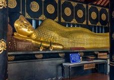 Złocista opierać Buddha statua przy Watem Chedi Luang w Chiang Mai, Tajlandia zdjęcie stock