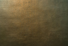 złocista tło skóra Zdjęcie Stock