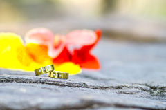 Złociste obrączki ślubne i kwiaty na kamiennym tle obraz royalty free