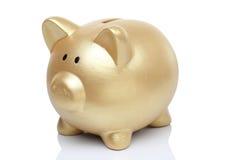 Złocisty Świniowaty bank Zdjęcie Royalty Free
