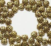 złocisty biżuterii liść target91_0_ Fotografia Royalty Free
