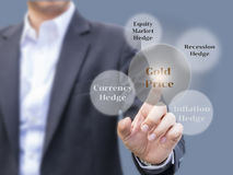 Złocisty Inwestorski planowanie z czynnikami wpływa złocistej ceny mov Obrazy Stock