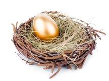 Złocisty jajko obraz royalty free