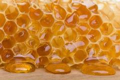 Złocisty kapiący Honeycomb Fotografia Royalty Free