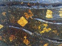 Złocisty liść na czarnej betonowej ścianie zdjęcia royalty free