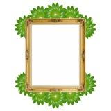 Złocisty luksusowy Louise i zieleni liście fotografii rama wokoło odizolowywaliśmy tło obrazy royalty free