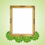 Złocisty luksusowy Louise i zieleni liście fotografii rama wokoło odizolowywaliśmy tło zdjęcia stock