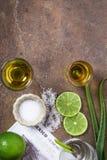 Złocisty Meksykański tequila z wapna, soli i agawy liśćmi Zdjęcie Stock