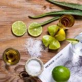 Złocisty Meksykański tequila z wapna, soli i agawy liśćmi Zdjęcia Royalty Free