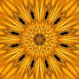 Złocisty mityczny kalejdoskop w formie złocisty słońca mandala, geometryczny fractal Zdjęcia Royalty Free