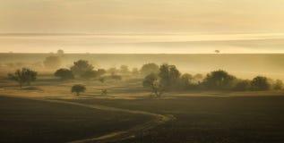 Złocisty wschód słońca zdjęcie stock