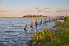 Złota łąka, Luizjana obrazy royalty free