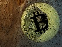 Złota bitcoin moneta w mydlanym bąblu Pojęcie rozdzielony bąbel i cyfrowy elektroniczny binarny księgi głównej bitcoin i technolo Zdjęcie Royalty Free