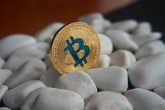 Złota bitcoin moneta wtykająca między białymi kamieniami Obraz Stock