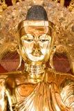 złota Buddha statua Fotografia Royalty Free