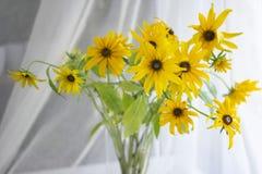 Złota chryzantema w Złotej wazie okno zdjęcia royalty free