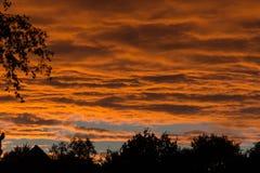 Złota godzina, kolorowe chmury i czarne sylwetki drzewa, słońce obrazy stock