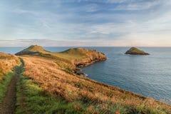 Złota godzina kupery, Pentire punkt, Cornwall zdjęcie stock