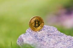 Złota i srebra waluty crypto bitcoin przeciw tłu zielona trawa Zdjęcie Royalty Free