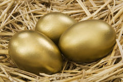 złota jajeczny gniazdeczko obrazy stock
